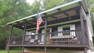 Potter County Single Family Home For Sale: 541 Weimer Hollow Road
