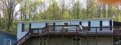 Gaines Single Family Home For Sale: 1810 Elk Run Road