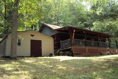 Tioga Single Family Home For Sale: 169 Horton Hollow Ln