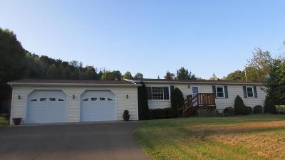 Millerton Single Family Home For Sale: 55 Draper Circle