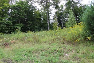 Blossburg Residential Lots & Land For Sale: 230 Water Street