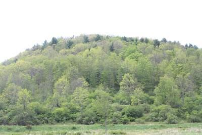Westfield Residential Lots & Land For Sale: North Fork Road