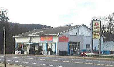 Mansfield Commercial For Sale: 50 W. Wellsboro St.