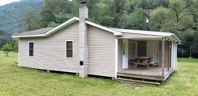 Potter County Single Family Home For Sale: 17 Happle Lane