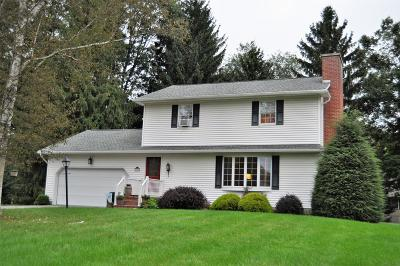 Mansfield PA Single Family Home For Sale: $249,000