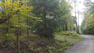 Galeton Residential Lots & Land For Sale: Tyoga Road