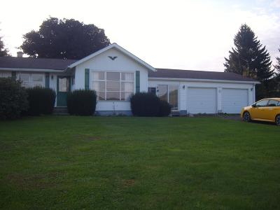 Wellsboro Single Family Home For Sale: 5 Dantz Run Ext.