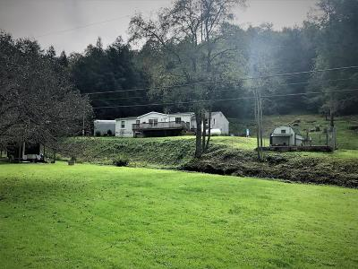 Coudersport, Galeton, Gaines, Wellsboro, Mansfield, Mainesburg, Troy, Sayre, Lawrenceville, Elkland, Knoxville, Westfield, Genesee, Liberty, Williamsport Single Family Home For Sale: 584 North Hollow Rd