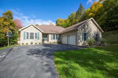 Wellsboro Single Family Home Uc - Continue To Show: 119 Hills Creek Drive