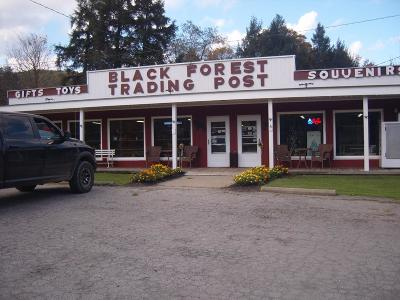 Potter County Commercial For Sale: 4246 Rt. 6 West