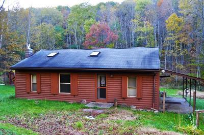 Wellsboro Single Family Home For Sale: 1361 Horse Thief Run Road