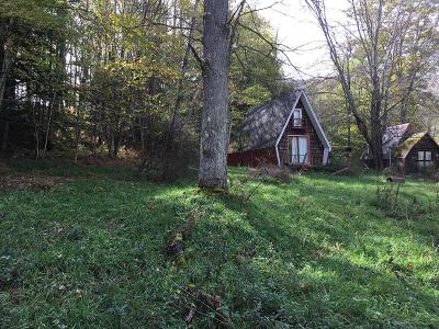 Potter County, McKean County Single Family Home For Sale: 143 Leadville Hollow Rd