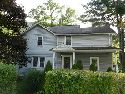 Roaring Branch Single Family Home For Sale: 11178 Route 14