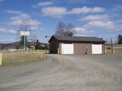Tioga Commercial For Sale: 17396 Route 287