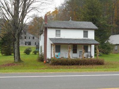 Coudersport Single Family Home For Sale: 433 State Route 49 East