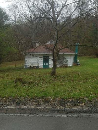 Coudersport Single Family Home For Sale: 319 Burrows Road