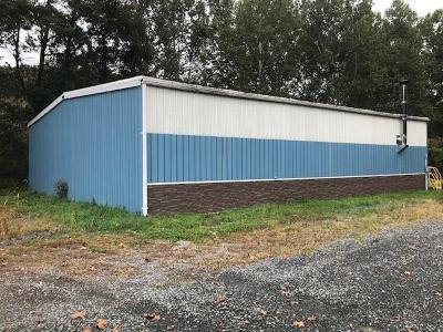 Mansfield Commercial For Sale: 2871 Route 660