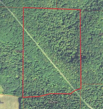 Shinglehouse Residential Lots & Land For Sale: S Canada Hollow Road