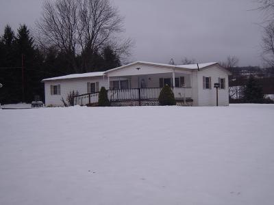 Mansfield Single Family Home For Sale: 15537 Route 6