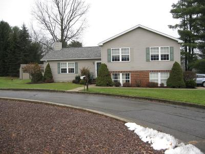 Wellsboro Single Family Home For Sale: 3 Willard Terrace