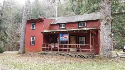 Wellsboro Single Family Home For Sale: 4033 Route 287
