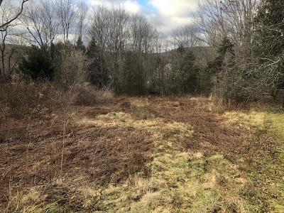 Wellsboro Residential Lots & Land For Sale: 00 Lot 1 Buena Vista St.