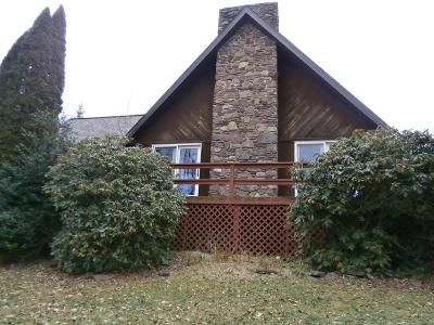 Wellsboro Single Family Home For Sale: 142 Wats Lane