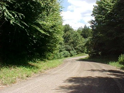 Wellsboro Residential Lots & Land For Sale: Lot 14 Buckhorn Court Road