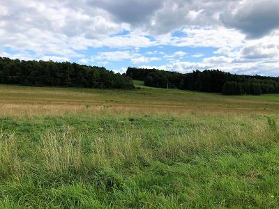 Coudersport Residential Lots & Land For Sale: Lot#6 Brookland Road (Sr1001)