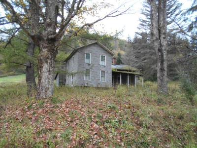 McKean County Single Family Home For Sale: 99 Strang Hollow Road