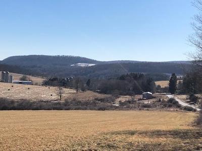Wellsboro Residential Lots & Land For Sale: Lot E, Balsam Road