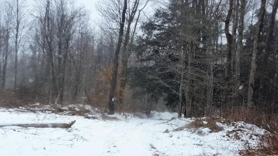 Coudersport Residential Lots & Land For Sale: 445 Cobb Hill Road