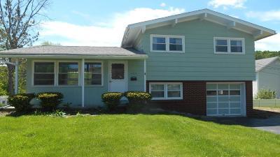 Wellsboro Single Family Home For Sale: 1163 Cherry St Extension