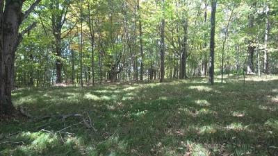 Harrison Valley Residential Lots & Land For Sale: 288 Whites Corner Rd