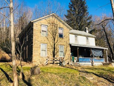 Millerton Single Family Home For Sale: 3819 Route 328