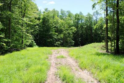 Coudersport Residential Lots & Land For Sale: 1174 Chipmunk Trail