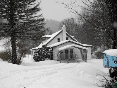 Coudersport Single Family Home For Sale: 464 Black Hole Rd