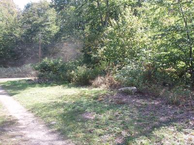 Wellsboro Residential Lots & Land For Sale: Lot #21 Right Asaph Road