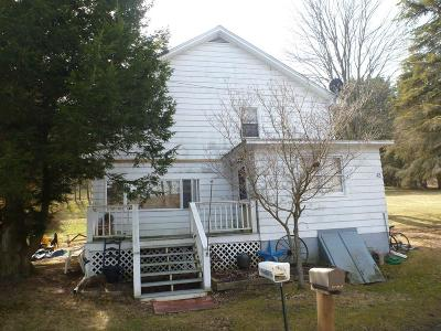 Blossburg Single Family Home For Sale: 43 Pine St