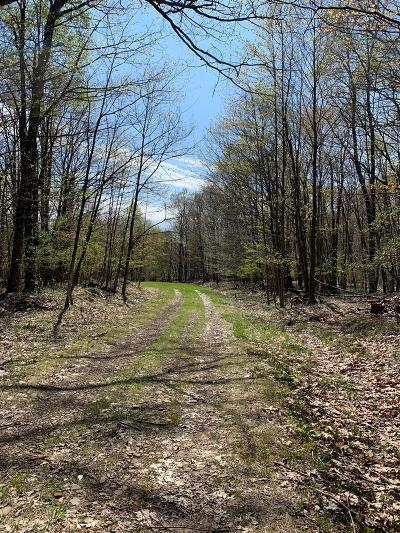 Coudersport Residential Lots & Land For Sale: Academy Hill Road Lot #s 37, 40, 43