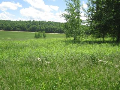Coudersport Residential Lots & Land For Sale: Clearview Drive #1