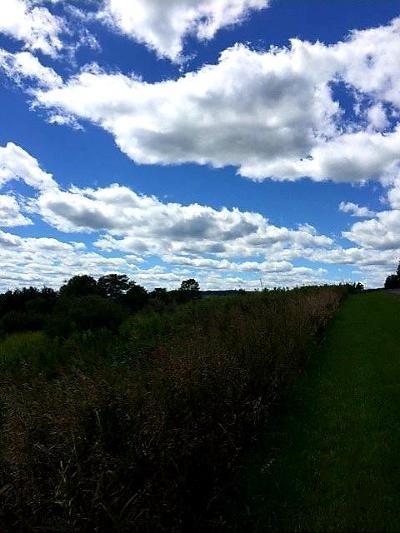Wellsboro Residential Lots & Land For Sale: Lot 18 Delmar Ridge Drive