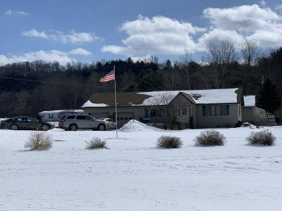 Potter County, McKean County Single Family Home For Sale: 40 Hanson Hollow Road