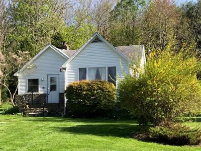 Wellsboro Single Family Home Uc - Continue To Show: 117 Dragon Fly Lane