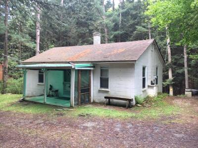 Potter County Single Family Home For Sale: 59 Rattlesnake Hollow