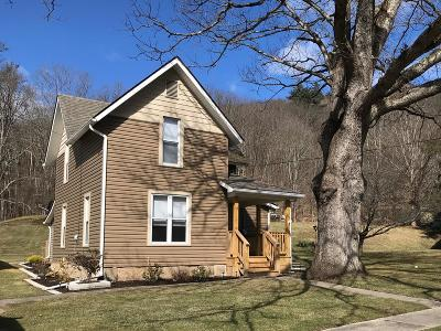 Gaines Single Family Home For Sale: 91 Route 349
