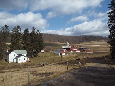 Potter County Farm For Sale: 1310 Route 872 - Dividing Ridge Road