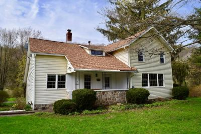 Wellsboro Single Family Home Uc - Continue To Show: 366 Mills Hill Road