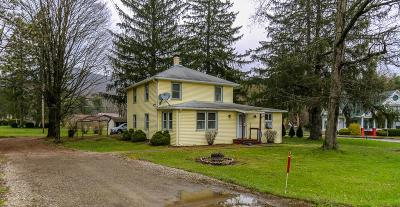Gaines Single Family Home For Sale: 1905 Route 6