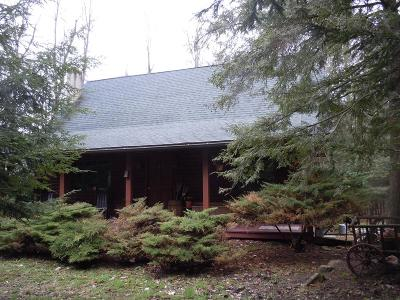 Wellsboro Single Family Home For Sale: 46 Whitetail Circle